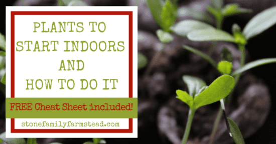 Homestead Blog Hop Feature - Plants to Start Indoors and How to