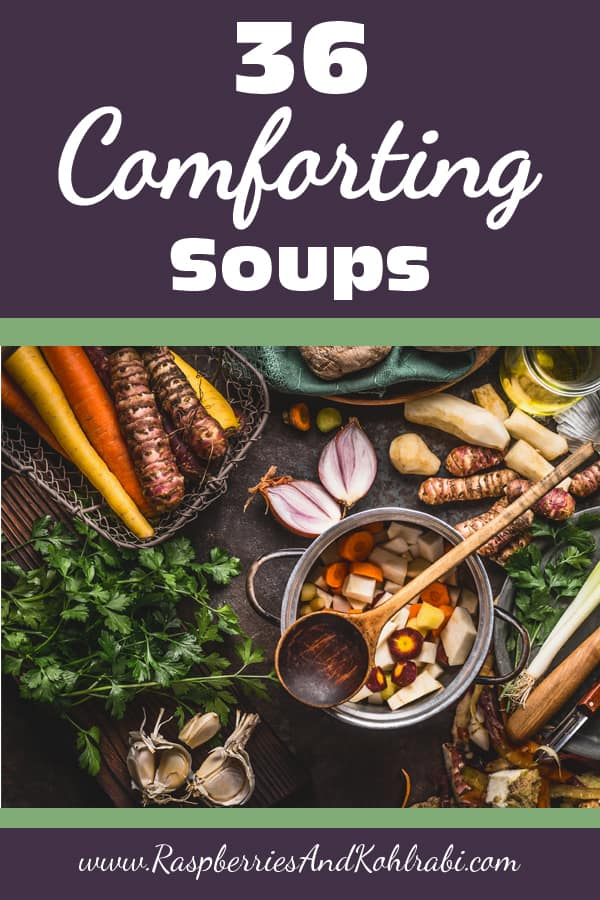 Homestead Blog Hop Feature - 36 Comforting Soups by Raspberries and Kohlrabi