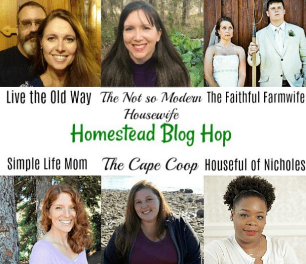 Blog Hop Hosts April 2018 - Simple Life Mom