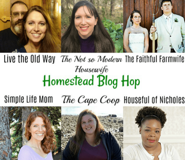 Blog Hop Hosts April 2018 - Simple Life Mom