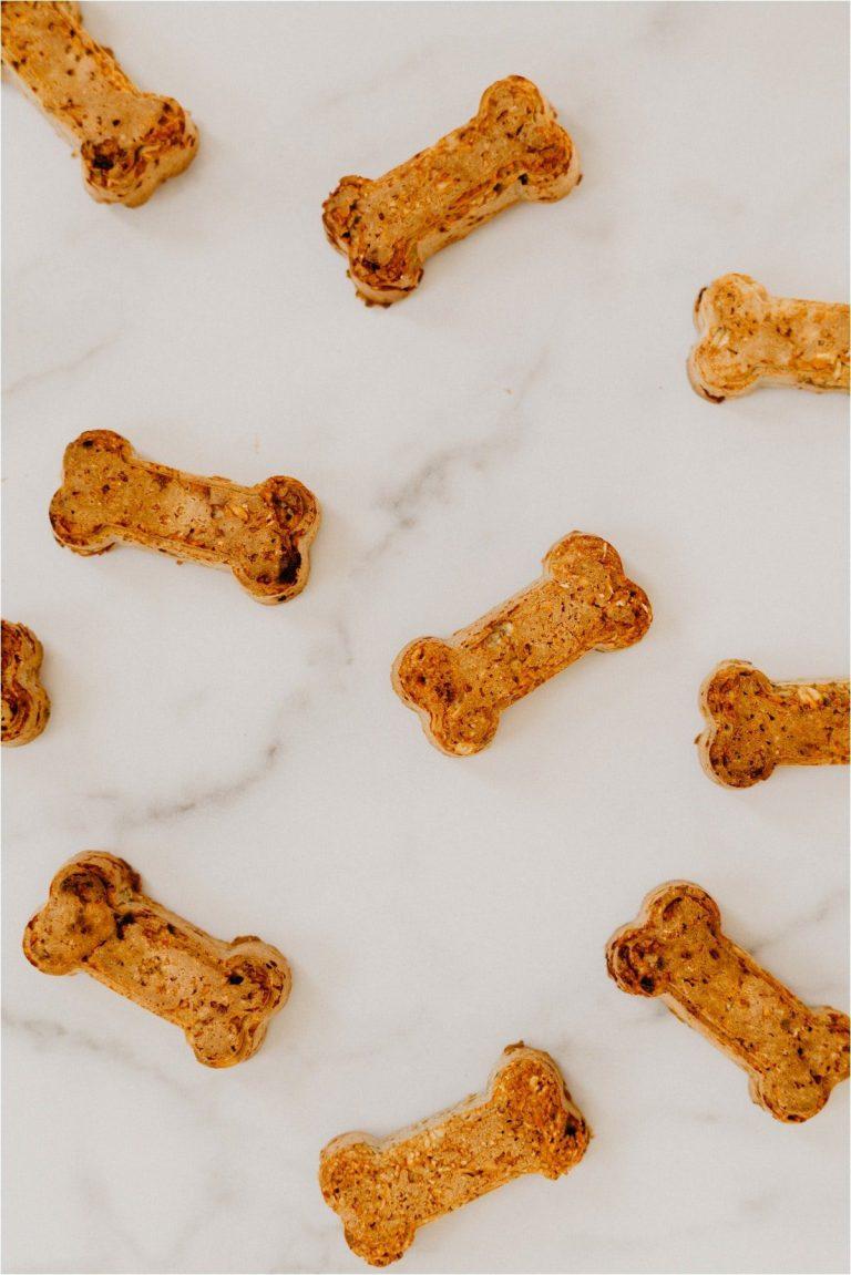 homemade pb dog treats