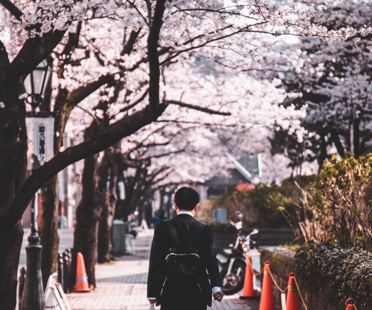 Japan real estate under 100000 usd dollars