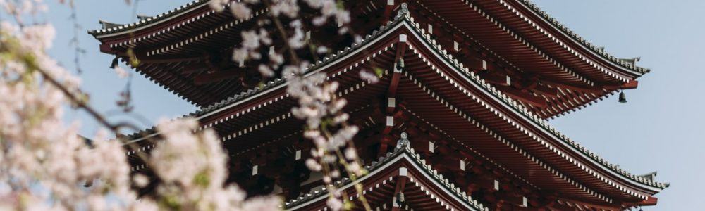 Owning Japanese Real Estate financial planning