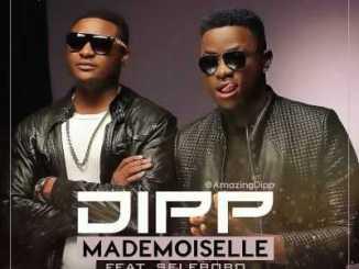wpid-dipp-ft