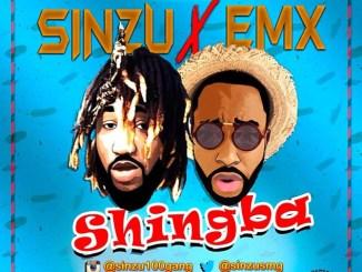 wpid-sinzu-emx-shingba