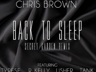 chris-brown-tyrese-back-to-sleep-remix