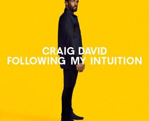 craig-david-16-495x495