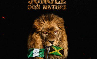 dreybeatz-jungle-don-mature-p3-download