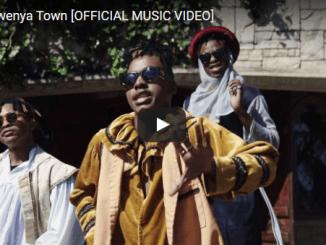 VIDEO: WTF – Ngwenya Town