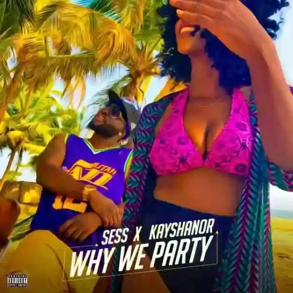 Download MP3 SESS X KAYSHANOR – WHY WE PARTY