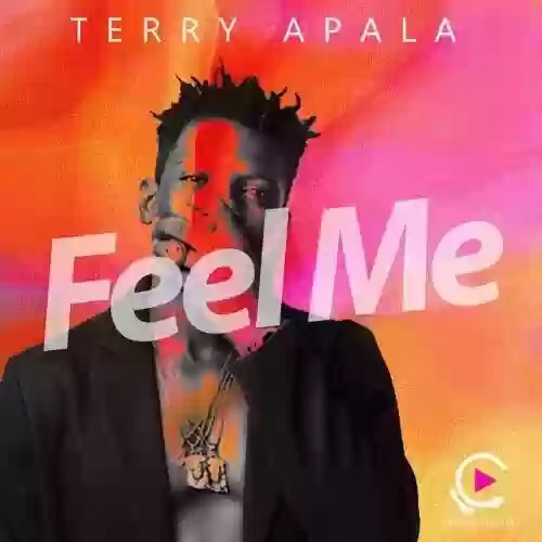Download MP3: Terry Apala - Feel Me