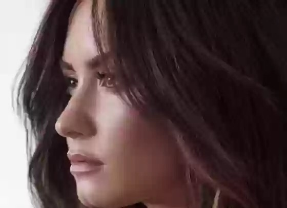 Demi Lovato - Sorry Not Sorry (Official Instrumental