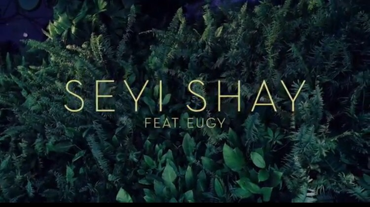 VIDEO: SEYI SHAY FT. EUGY & EFOSA – YOUR MATTER