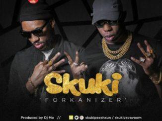 Download SKUKI – FORKANIZER mp3