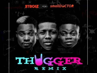 Download Small Doctor & 2TBoiz – Thugger (Remix)