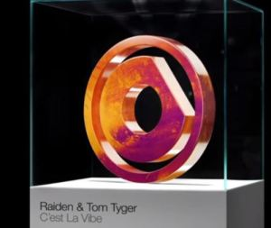 Download Raiden & Tom Tyger – C'est La Vibe