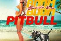 Download Pitbull – Muevelo Loca Boom Boom