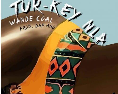Download Wande Coal – Turkey Nla