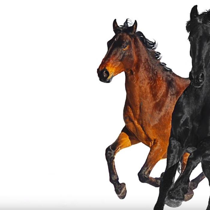 Lil Nas X - Old Town Road (Remix) Ft. Billy Ray Cyrus (mp3 download)