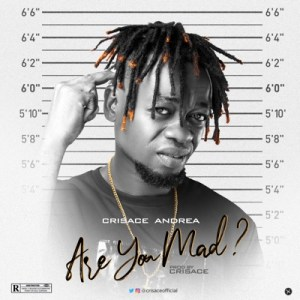 Crisace Andrea – Are You Mad