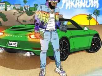 Money Man – Paranoia (Album download)