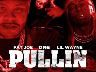 Fat Joe - Pullin Ft. Lil Wayne