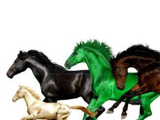 Lil Nas X - Old Town Road (Remix) Ft. Young Thug & Mason Ramsey