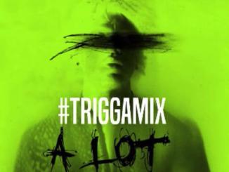 Trey Songz - A Lot (TriggaMix)