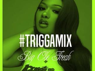 Trey Songz - Big Ole Freak (TriggaMix)