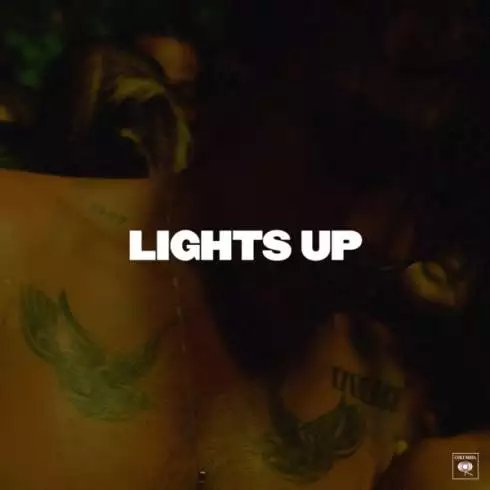 Harry Styles – Lights Up [Download]