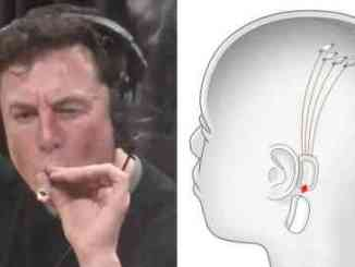 Elon Musk Says People Will Eventually Consume Music Through Brain Chip