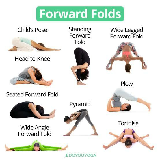 Forward folds Stretching