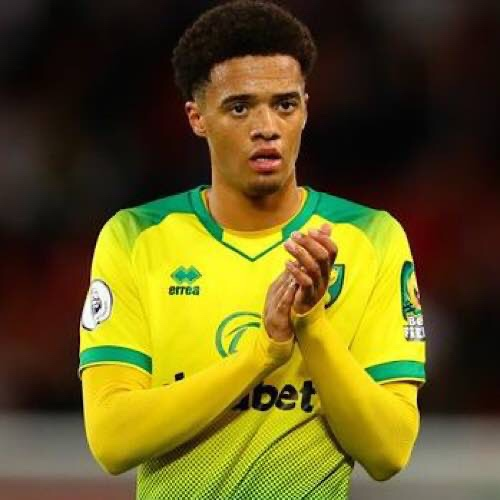 Jamal Lewis Has Signed For Newcastle From Norwich City