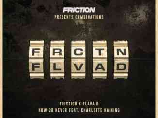 Friction, Charlotte Haining & Flava D – Now or Never (download)