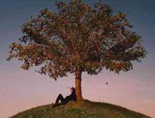 slowthai – TYRON Album (download)