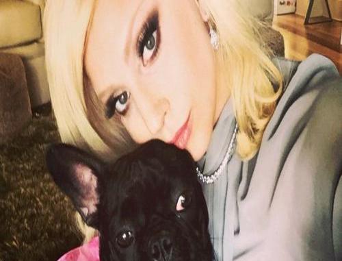 Lady Gaga's Dogwalker Ryan Fischer Made A Statement After Surviving A Brutal Shooting