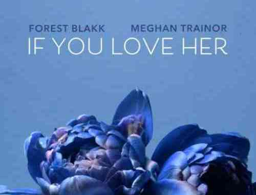 Forest Blakk – If You Love Her f. Meghan Trainor (download)