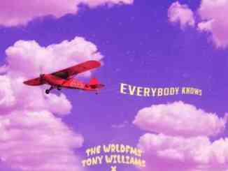 The WRLDFMS Tony Williams & Wale – Everybody Knows (download)