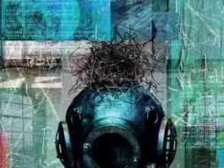 The Chills – Scatterbrain Album (download)