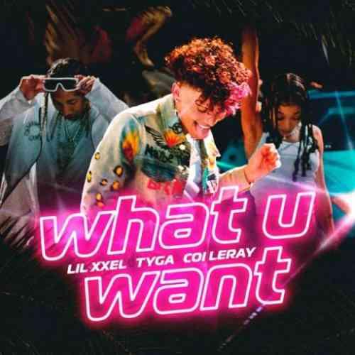 Lil Xxel, Tyga & Coi Leray – What U Want (download)