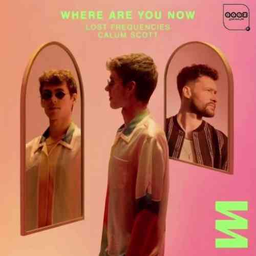 Lost Frequencies x Calum Scott – Where Are You Now (download)