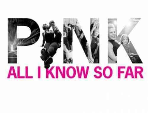 Pink – All I Know So Far f. Dubdogz & Selva Remix (download)