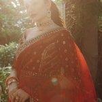 QALAMKAR | LUXURY SHADMANI FORMAL Collection | SM-06