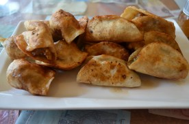 Set of three-sided-charred potstickers