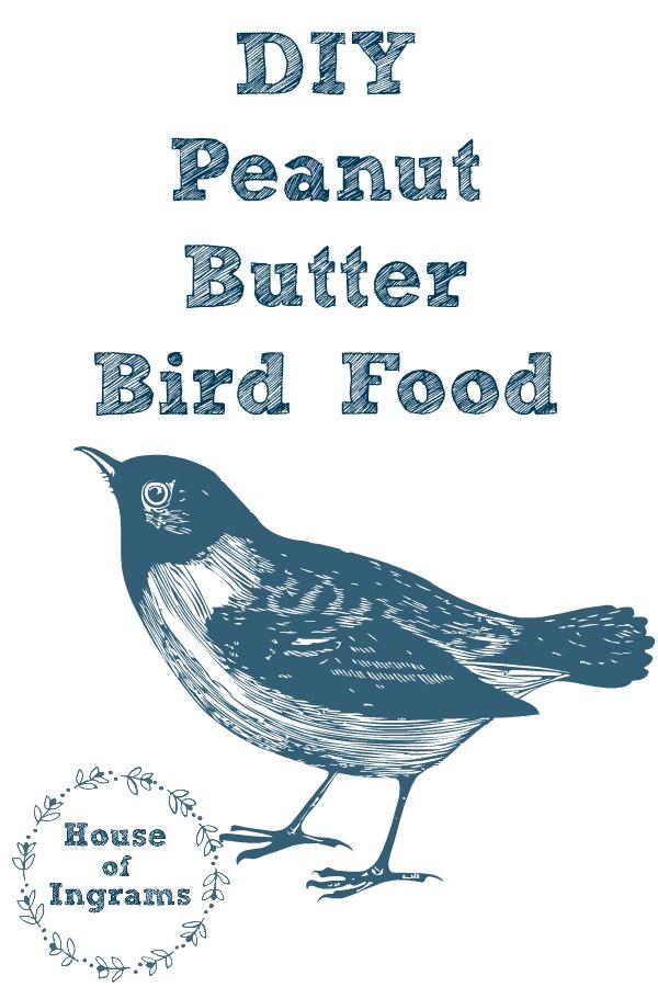 DIY Peanut Butter Bird Food