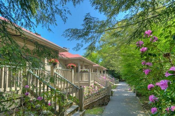 Chestnut Lodge Mountain Lake Lodge   Kellerman's Mountain House   Dirty Dancing Resort