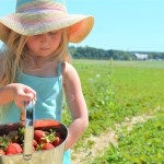 WIN Summer Fun Festival Admission for Your Family | Brooks Farms | Strawberry Picking