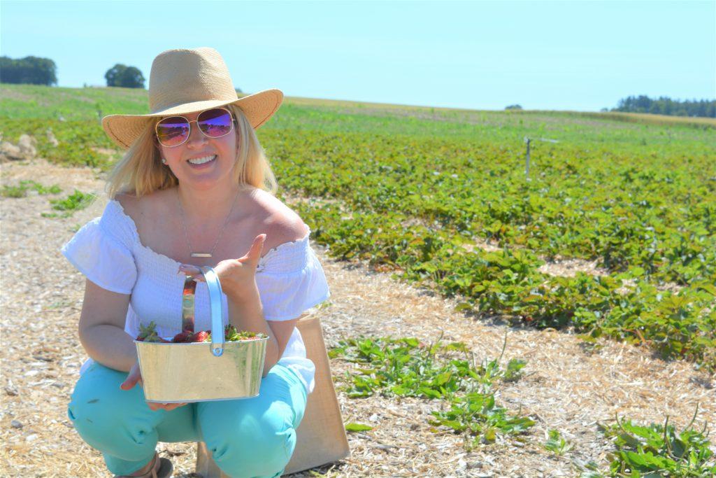 Brooks Farms | Strawberry Picking Season | Pick Your Own | Farmer's Market | Ontario Farmers