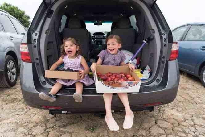 blackberries and nectarines