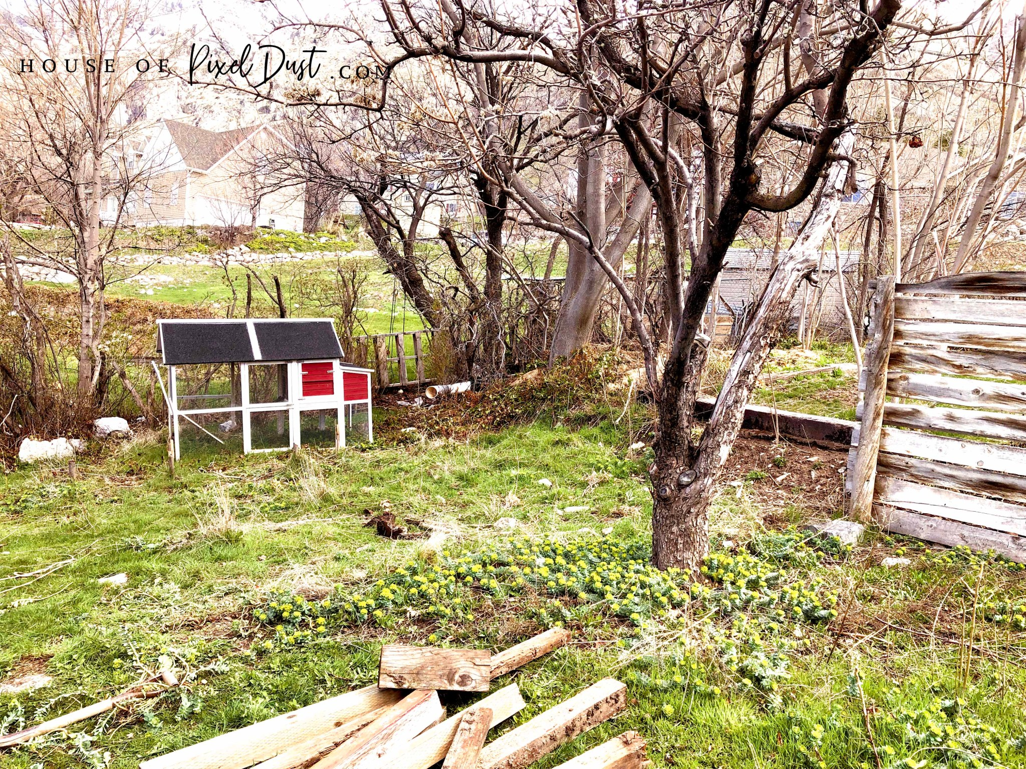 This image has an empty alt attribute; its file name is diy-compass-garden-bed-makeover-05.jpg